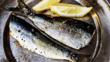 Découvrez 5 bienfaits épatants de la sardine sur notre organisme