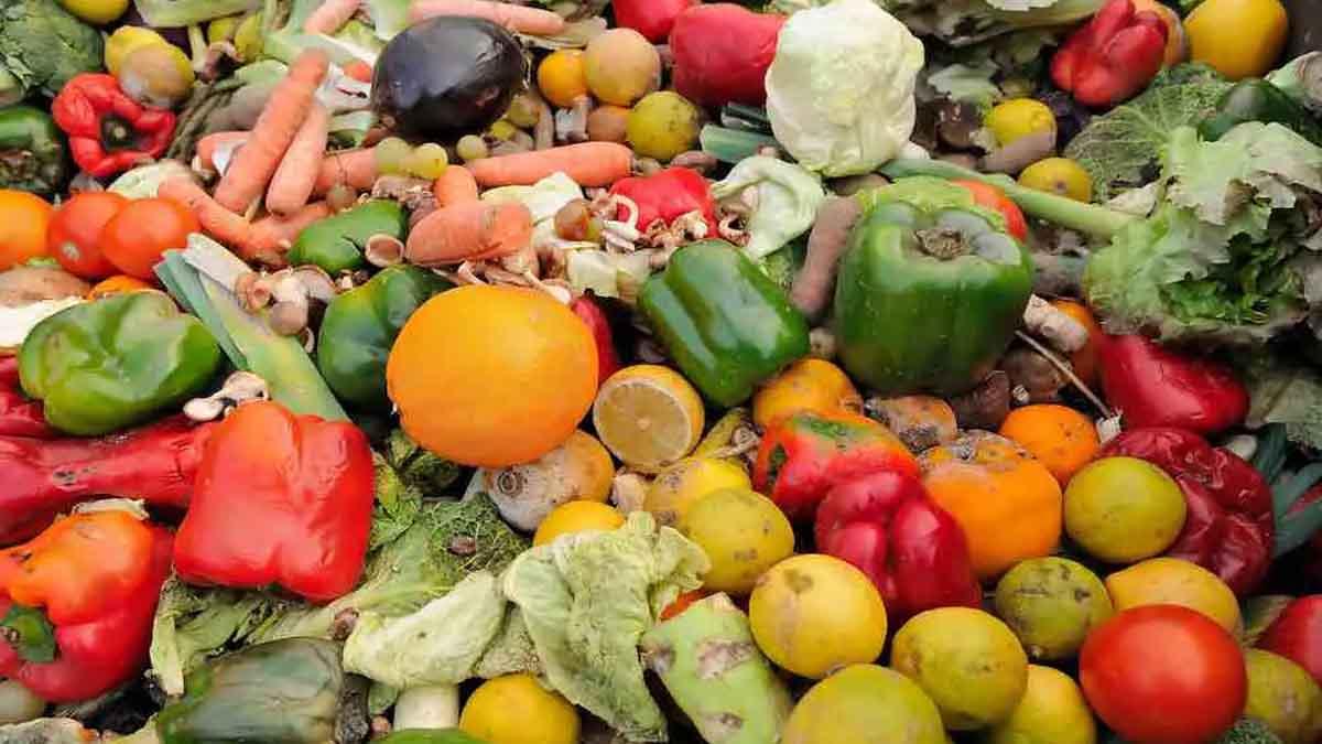 Découvrez ces aliments périmés consommables même après la date de péremption